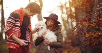 Der Hund beim ersten Date