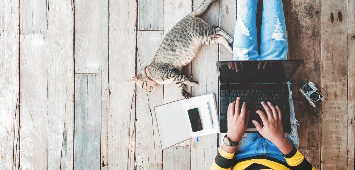 Als Katzen-Liebhaberin sind verantwortungsbewusste Partner